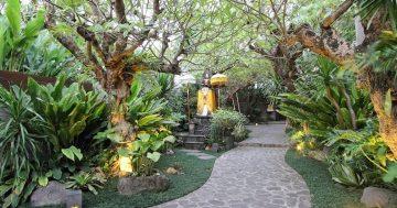 Tukang Taman Ngawi – Konsep Taman Bali