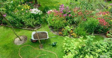 Tukang Taman Madura – Perawatan Taman